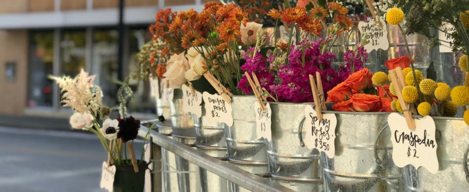A row of fresh-cut flowers at the Ozark Mountain Flower Truck stand
